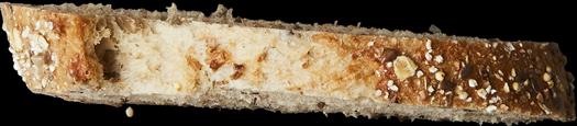 tranche de pain 10