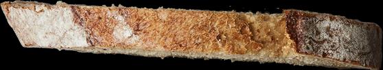 tranche de pain 9